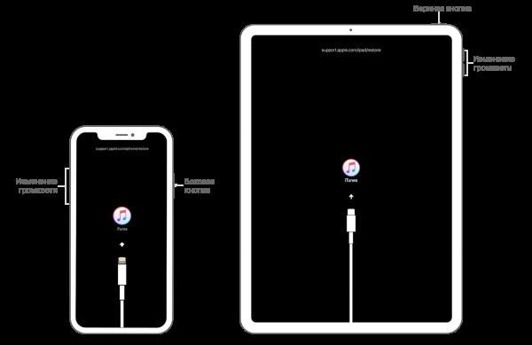 Как восстановить пароль Apple ID [Инструкция]